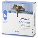 Droncit Spot On Pipetten, 4x0,5 ml