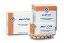 Angocin Anti Infekt, 100 Stück