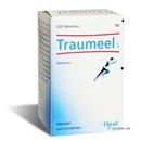 Traumeel S Tabletten, 250 Stück